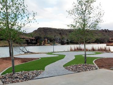 Artificial Grass Carpet Monterey Park, New Mexico Paver Patio artificial grass