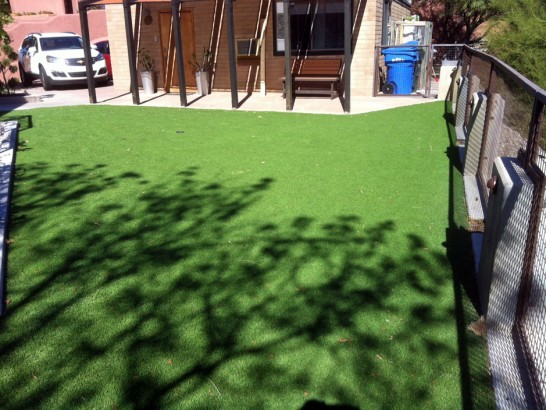 Artificial Grass Photos: Artificial Lawn Eagle Nest, New Mexico Paver Patio, Backyard Landscaping Ideas