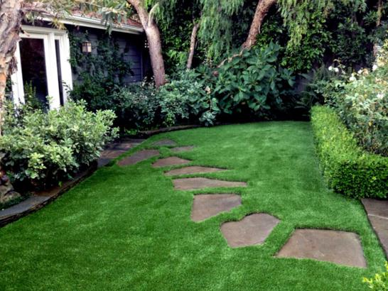 Artificial Turf Williamsburg, New Mexico Roof Top, Small Backyard Ideas artificial grass