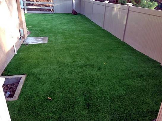 Fake Grass Carpet Bayard, New Mexico City Landscape, Backyard Designs artificial grass