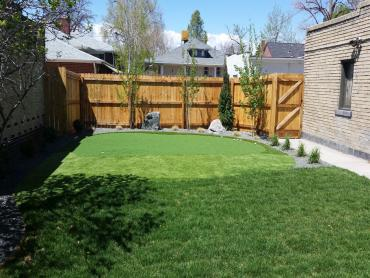 Artificial Grass Photos: Fake Grass Carpet East Pecos, New Mexico Best Indoor Putting Green, Backyard