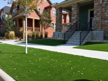 Fake Grass Sedillo, New Mexico Design Ideas, Front Yard Landscaping Ideas artificial grass