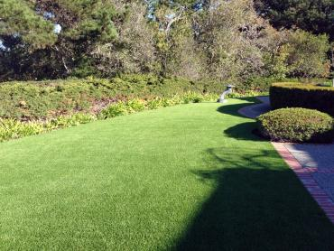 Fake Lawn Huerfano, New Mexico Landscape Ideas, Front Yard Design artificial grass