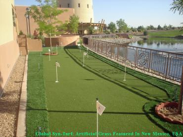 Artificial Grass Photos: Lawn Services Los Ranchos de Albuquerque, New Mexico Landscape Design, Backyard