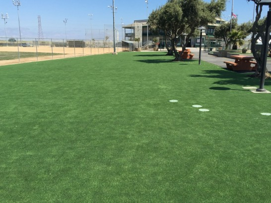 Plastic Grass Los Luceros, New Mexico Landscaping, Recreational Areas artificial grass