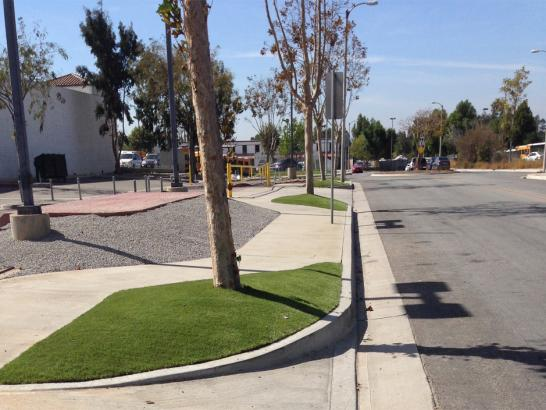Synthetic Grass Cost Sheep Springs, New Mexico Landscaping, Commercial Landscape artificial grass