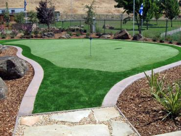 Synthetic Lawn Los Ranchos de Albuquerque, New Mexico Lawn And Landscape, Beautiful Backyards artificial grass