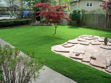 Synthetic Turf Supplier Hatch, New Mexico Rooftop, Beautiful Backyards artificial grass