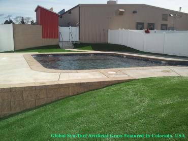 Turf Grass Enchanted Hills, New Mexico Backyard Deck Ideas, Pool Designs artificial grass