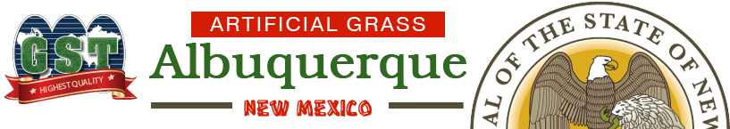 Artificial Grass Albuquerque New Mexico